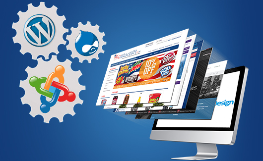 Magento Wordpress Drupal eCommerce Services