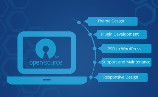Open Source Customization Web Development