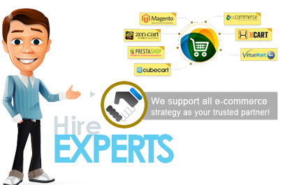 hire-custom-ecommerce-developer-in-pakistan